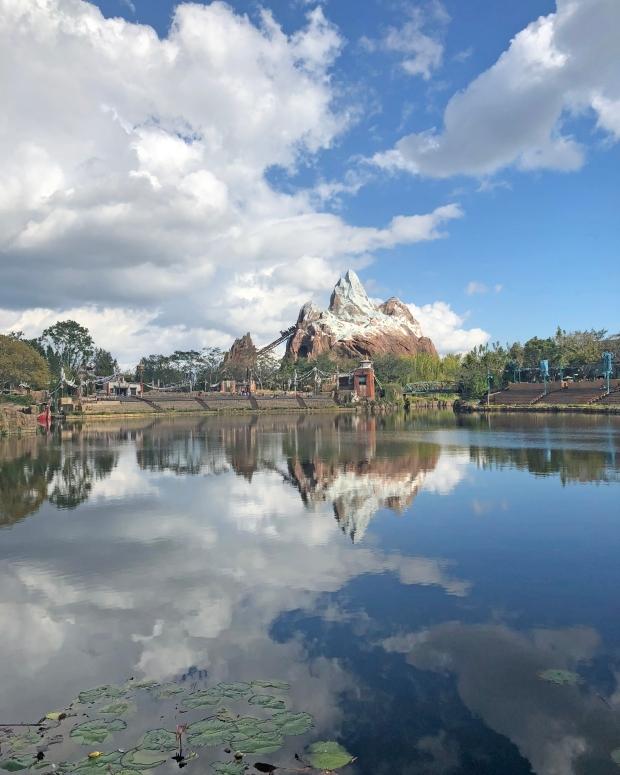 View of Expedition Everest from Flame Tree Barbecue