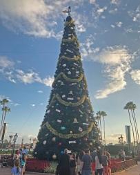 Holiday Decorations at Epcot