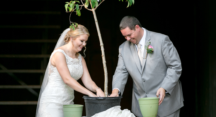 Planting Our Wedding Tree