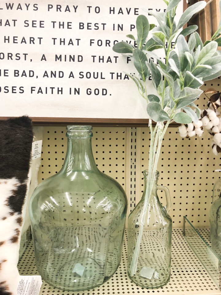 Hobby Lobby Lambs Ear and Glass Jugs — Dammit, Hali