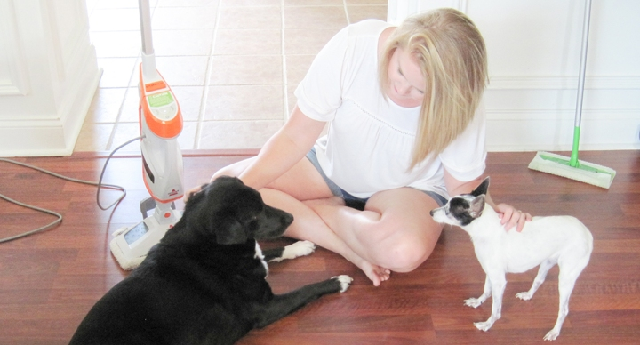 How I Keep Our Floors Clean with 3 Pets