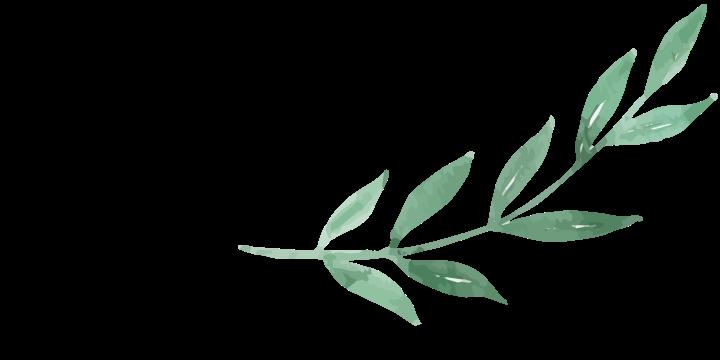 Branch-01
