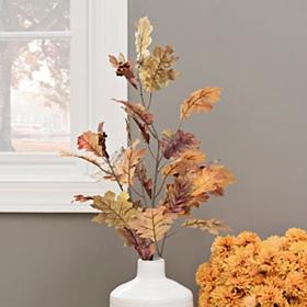 Brown Oak Leaf Stem