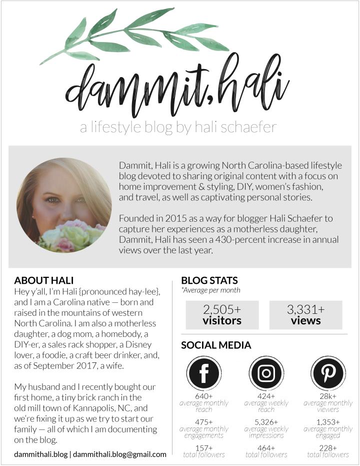 DammitHali-Media-Kit-01