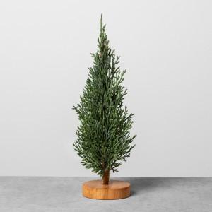 Mini Cedar Trees